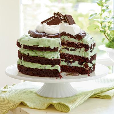 Mint Chocolate Chip Ice-Cream Cake / Recipe